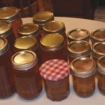 Various sized jars of honey.