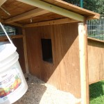 Inside view of the ten hen house chicken coop.