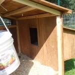 Inside view of the ten hen house chicken coop.