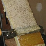 Uncapping Frame Of Honey With Hot Knife