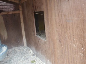 Entrance to the external nest box.