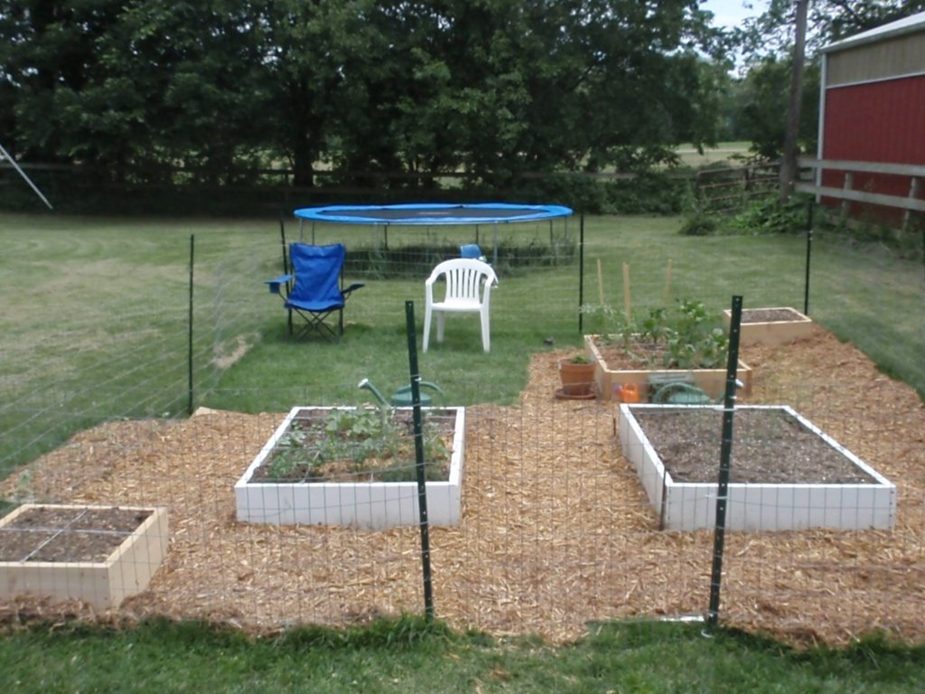 Delightful Square Foot Garden Beds With Mulch The Fence Will Keep Chickens Out ...