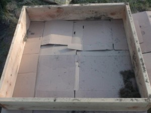 empty square foot garden box