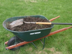 wheel barrow full of compost
