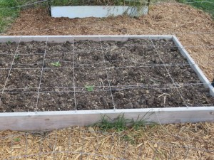 raised garden bed with fresh compost