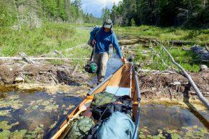 scouting a beaver dam