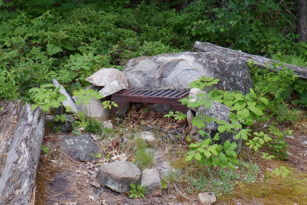 overgrown fire grate in the bwca