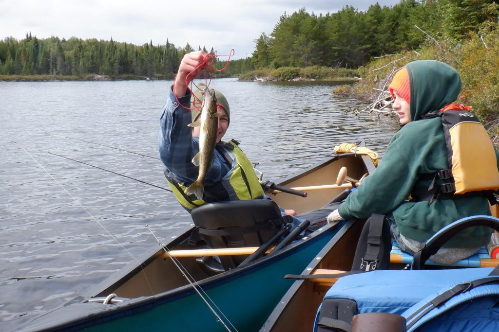 holding a walleye